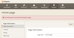 Magento 2.0 bugs something went wrong cms page